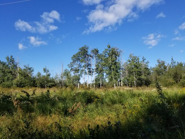 0 7 Mile Road, Sugar Island, MI 49783