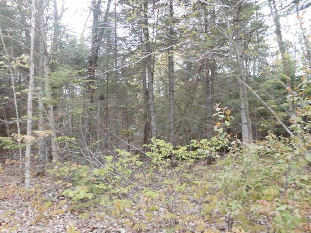 25 Acres Hunting Land