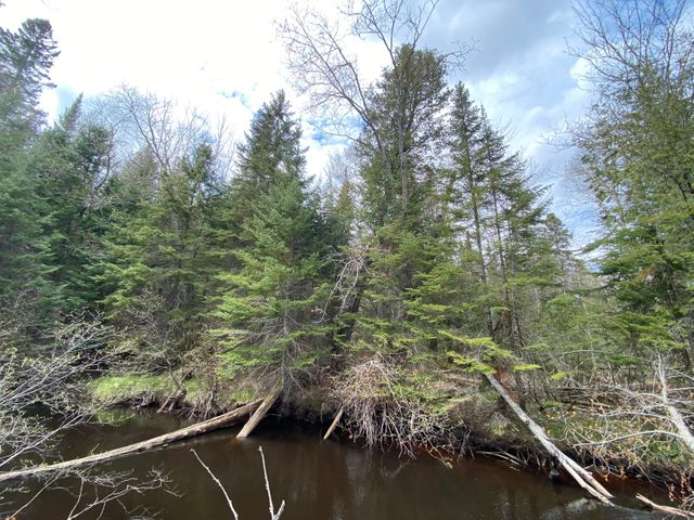 The Betsy River runs through the property