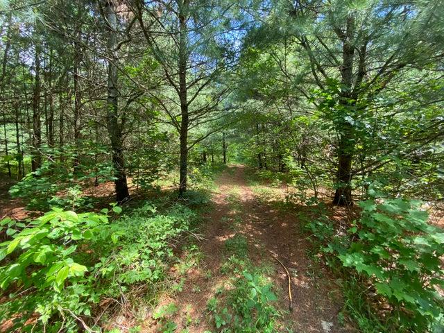 40 Acres-A Trombley RD, Trout Lake, MI 49793