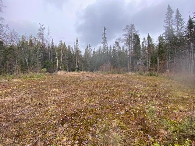 1.5 acres Kolke Trail, Sugar Island, MI 49783