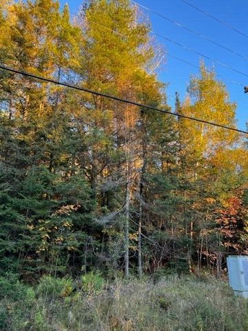 Within 10 minutes to the Sugar Island this 5.89 M/L acres would make a great building site. additional 133.33 ft adjoins this property to the north