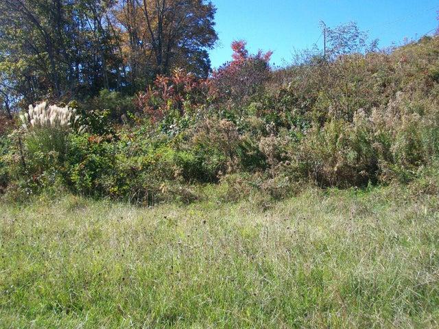 00 Bushy Meadow Creek, Leivasy, WV 26676