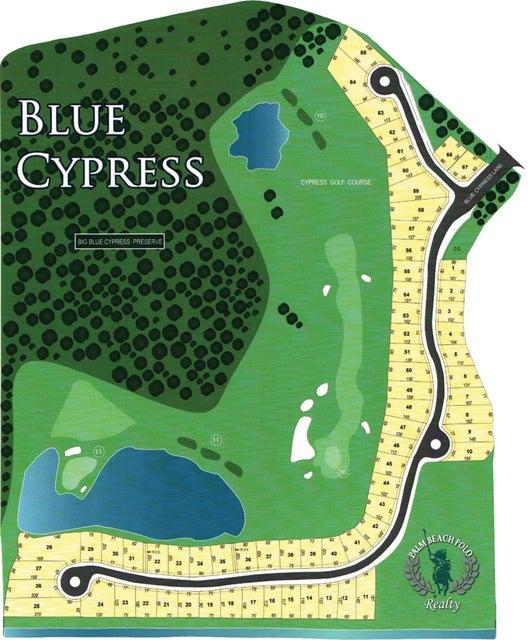 2821 Blue Cypress Lane