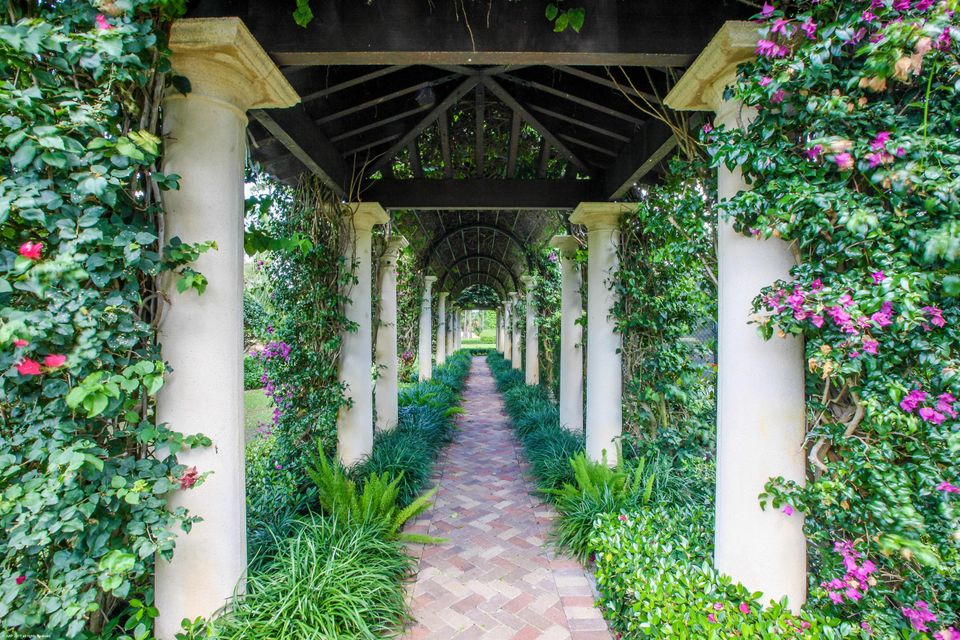 Pergola Alley by Tennis Court