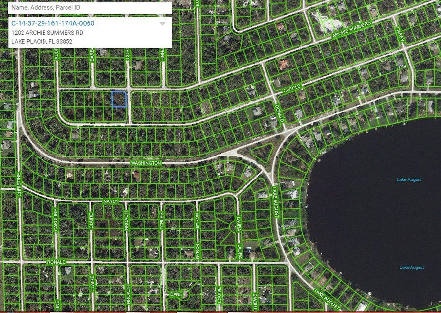1202 Archie Summers Road, Lake Placid, Florida 33852, ,Land,For Sale,Archie Summers,RX-10378403
