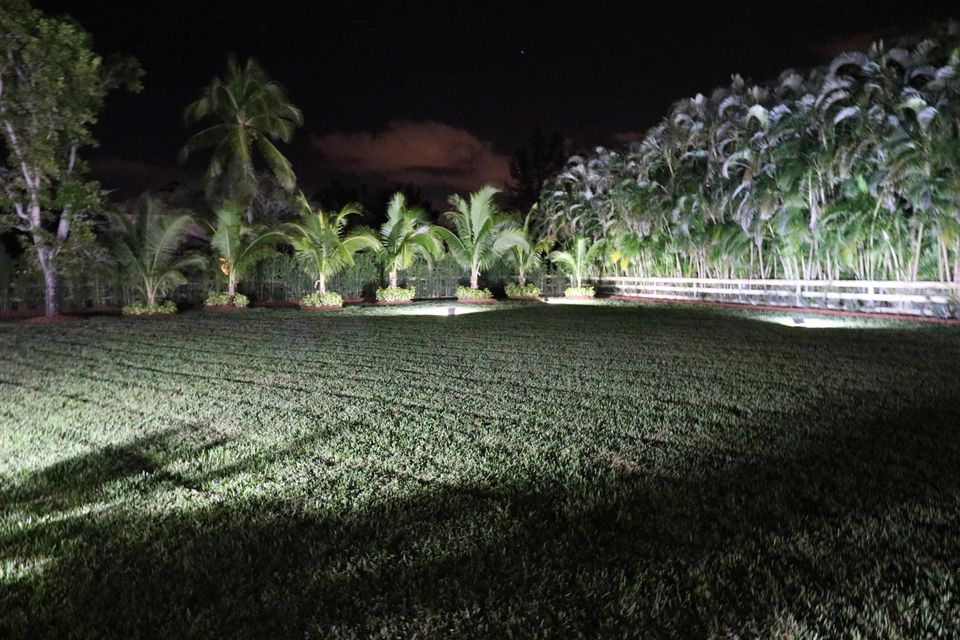 night view of backyard with coconut and