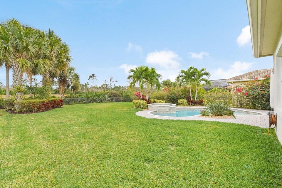 Oversized Backyard/Pool