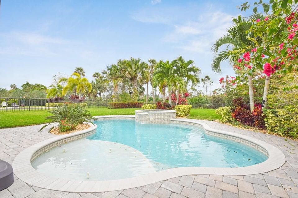 Tropical Pool/Spa