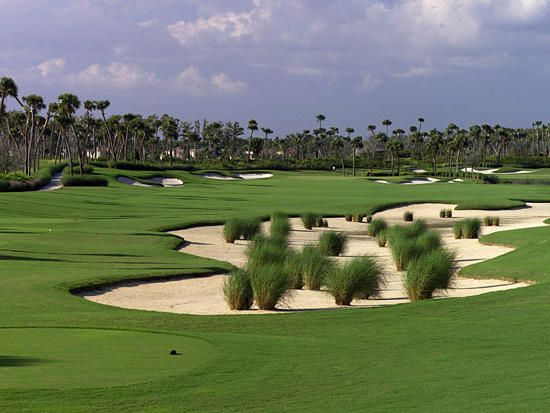 Golf Course ~ Jupiter