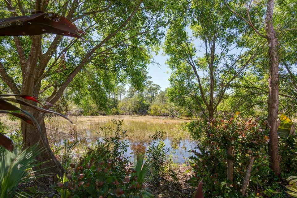 Beautiful Water/Tree-Lined Views