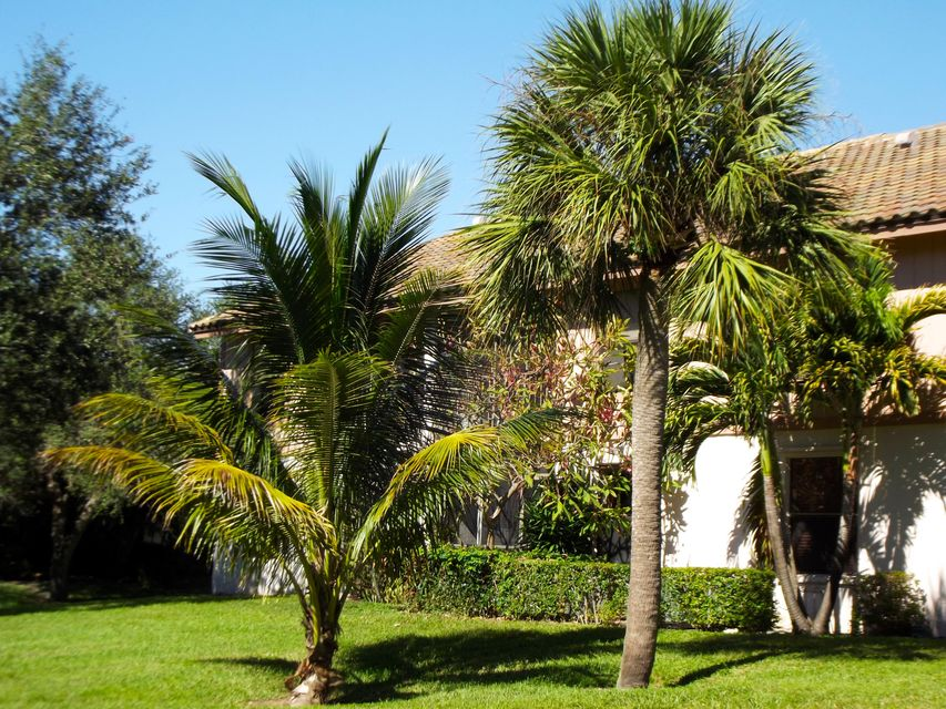 3355  Jaywood Terrace #j-214 Boca Raton, FL 33431