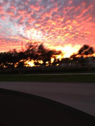10173 Mangrove Drive, 203, Boynton Beach, FL 33437