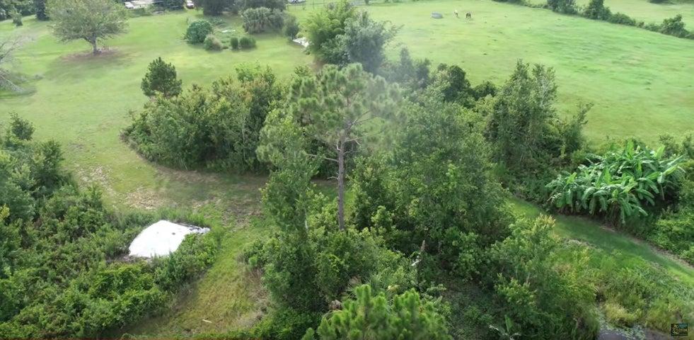 307 Wetlands Place, St. Cloud, FL 34771