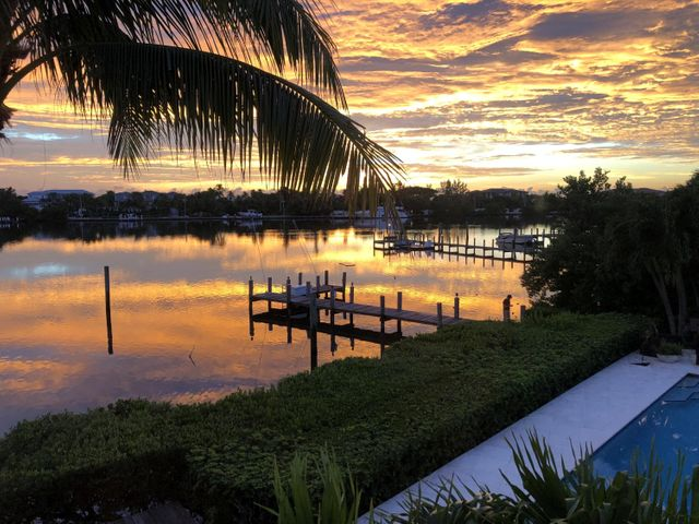 Sunrise Palm Tree Gold
