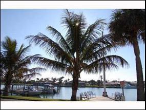 1151 Carlton Court, 205, Fort Pierce, FL 34950