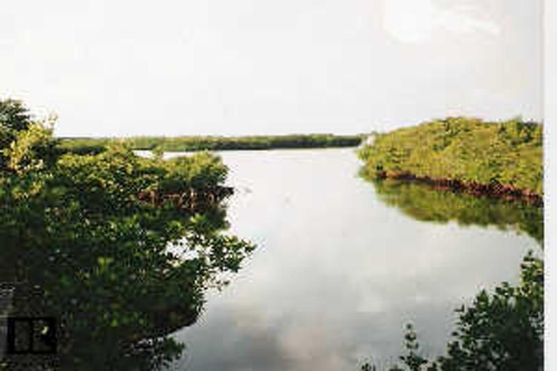213 Harbor Drive, Key Largo, FL 33037
