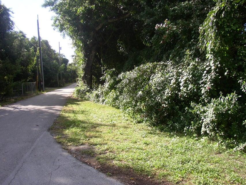 Poinsetta, Key Largo, FL 33037