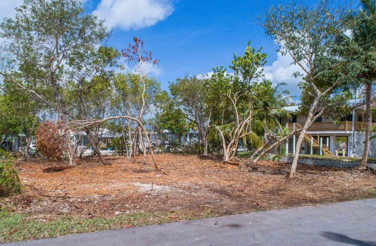 Lot 5 Carolyn Avenue, Little Torch Key, FL 33042
