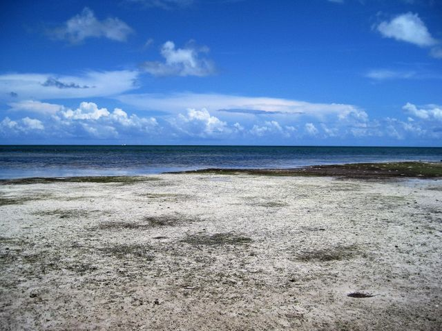 58244 Overseas Highway, Grassy Key, FL 33050