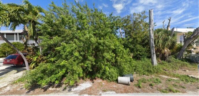 165 Venetian Drive, Lower Matecumbe, FL 33036