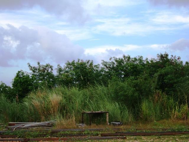 North SABANA Drive, Barrigada, GU 96913 - Photo #9