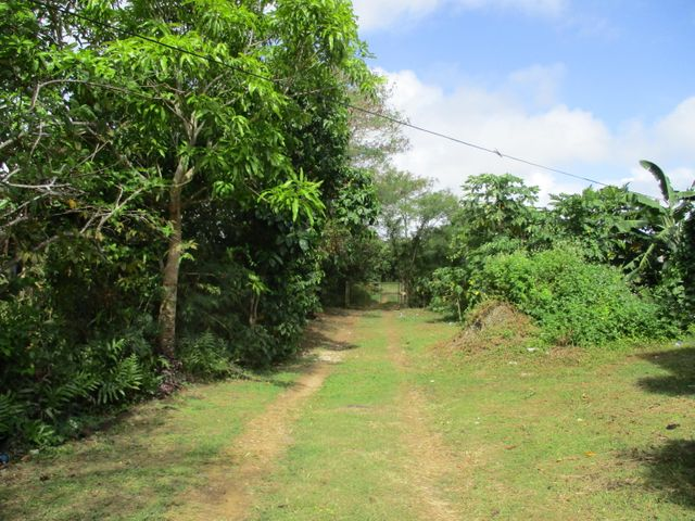 Malojloj Highway, Inarajan, GU 96915 - Photo #3