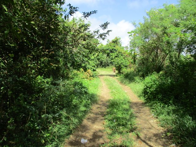 Malojloj Highway, Inarajan, GU 96915 - Photo #4