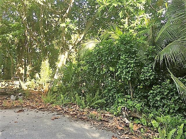 CHALAN LUNA RTE 4, Ordot-Chalan Pago, GU 96910 - Photo #1