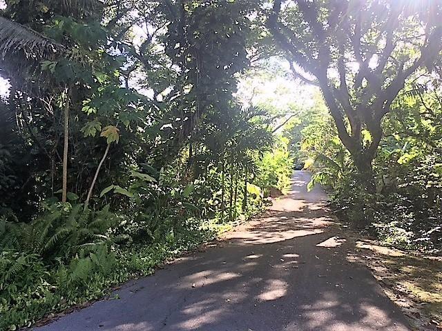 CHALAN LUNA RTE 4, Ordot-Chalan Pago, GU 96910 - Photo #3