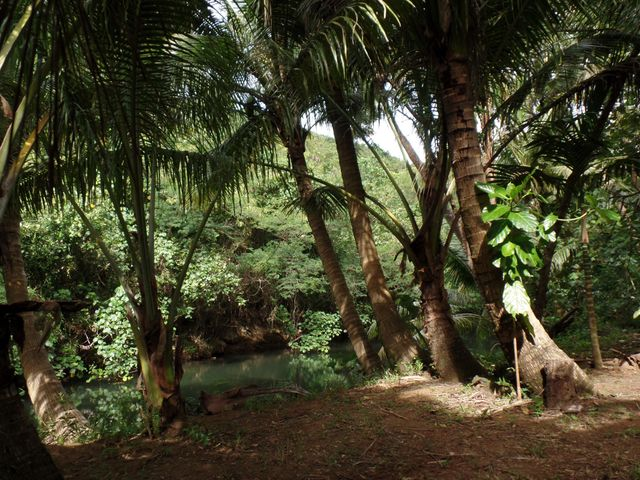 Chalan Che, Route 4 Pago Bay, Ordot-Chalan Pago, GU 96910 - Photo #11