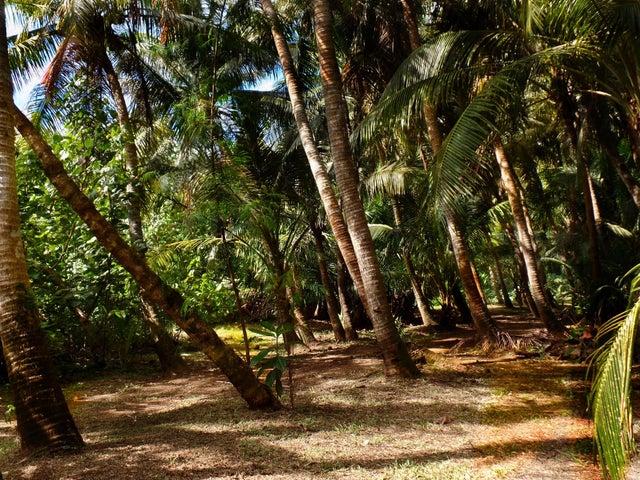 Chalan Che, Route 4 Pago Bay, Ordot-Chalan Pago, GU 96910 - Photo #12