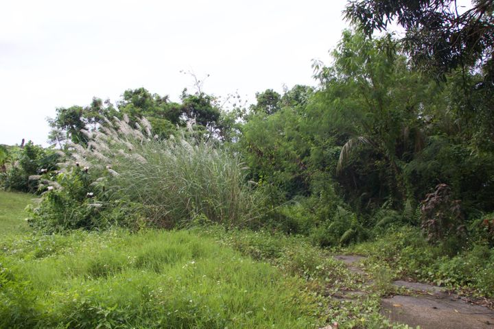 Chalan J. Kindo, Santa Rita, GU 96915 - Photo #1