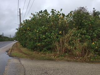 Marine Corps Drive, Yigo, GU 96929 - Photo #0