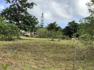 Kayen Bisinu Street, Yigo, Guam 96929