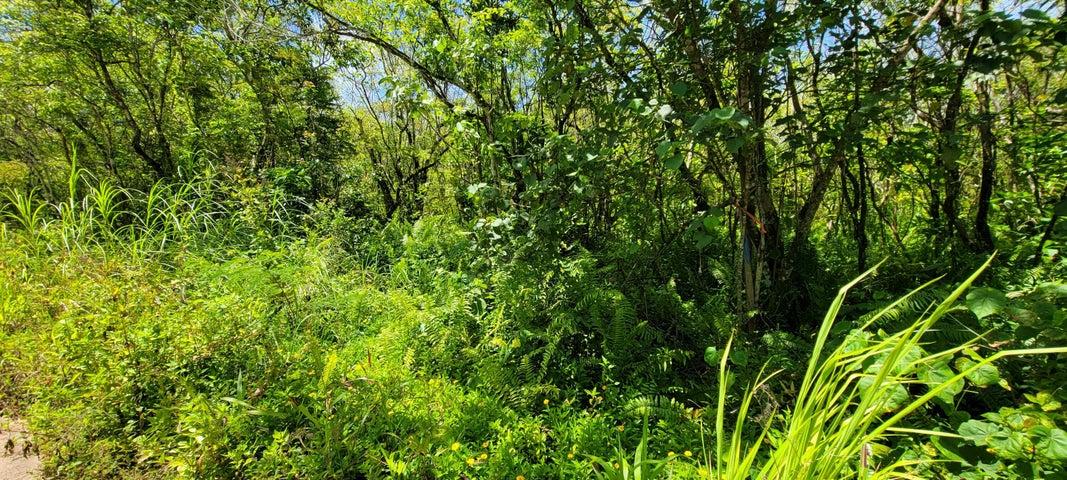 Chalan Birada, Yigo, Guam 96929