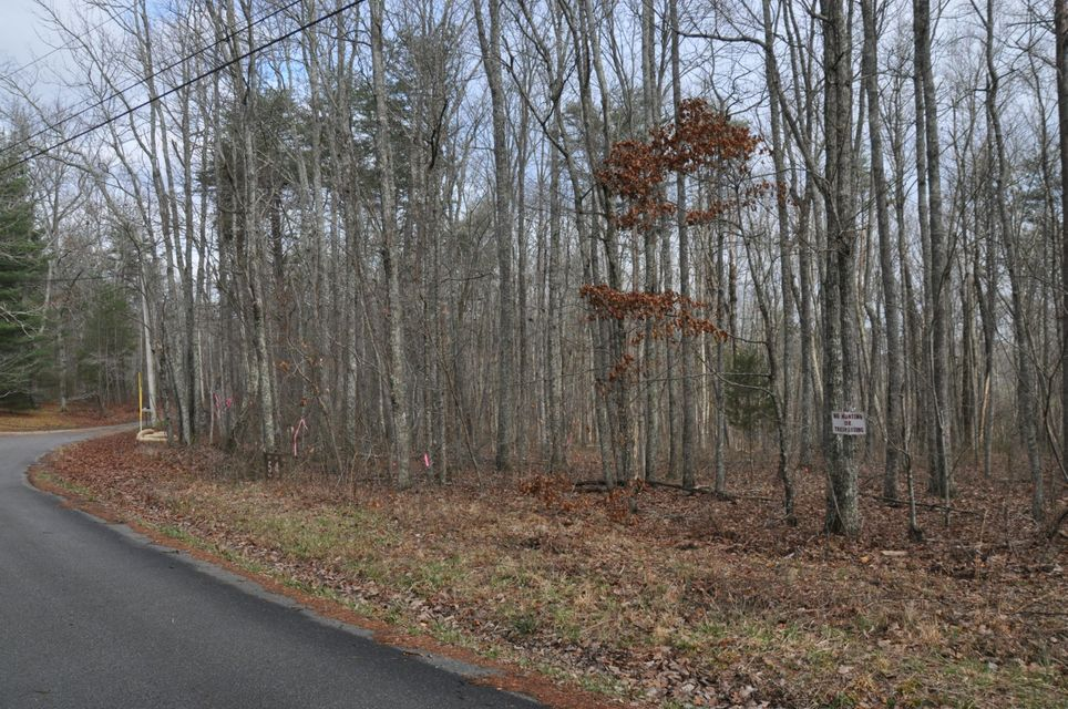11 Acre wooded tract at the end of a quiet road. All new home are being built down the street and this is the last lot available.