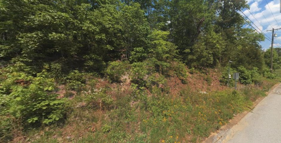 6745 Flagstone Dr, Lot 232, Ooltewah, TN 37363