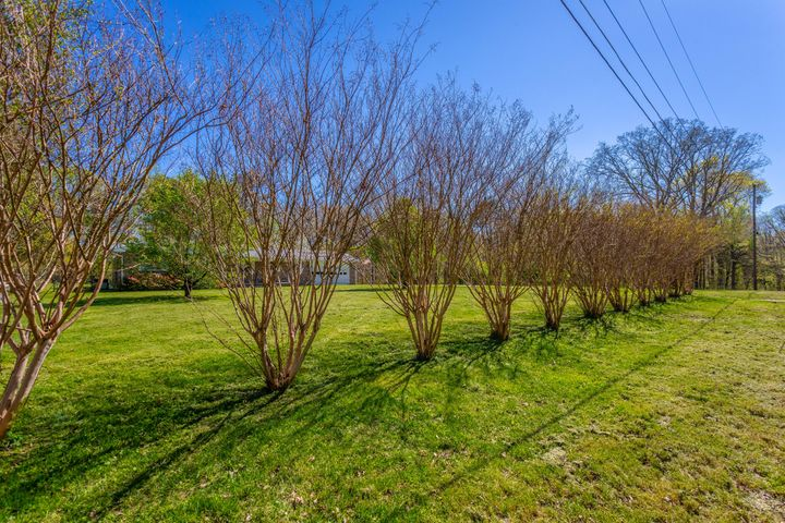 1012 Mclean Ave, Signal Mountain, TN 37377