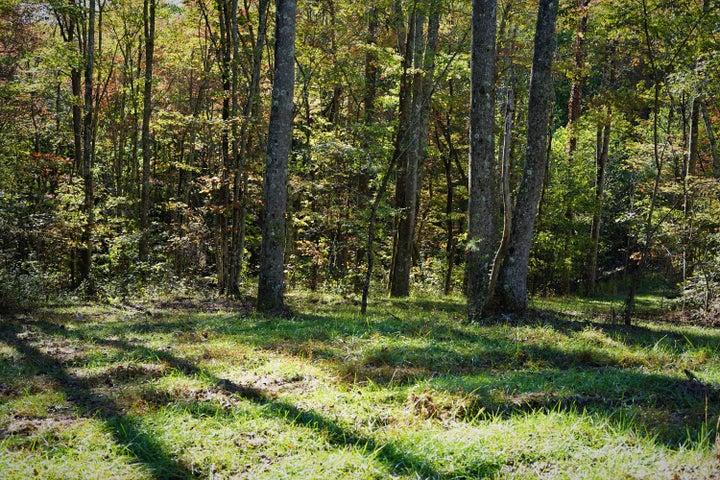 0 Woods Ct, 36, Signal Mountain, TN 37377