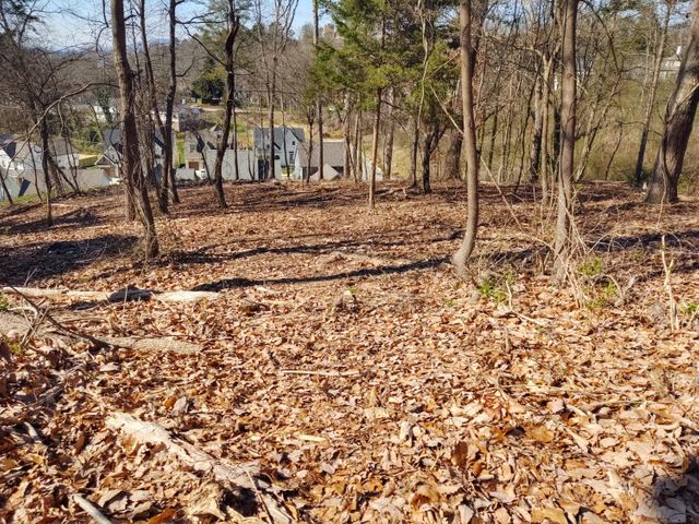 Gently sloping homesite in Northshore!