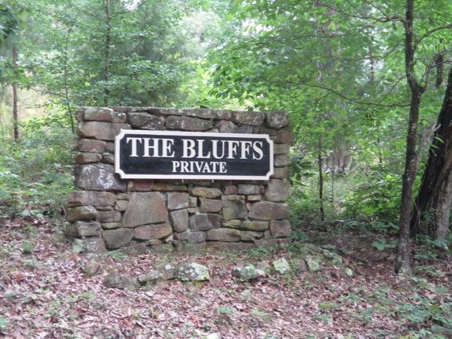 0 S Bluffs Rd, Lots #32/33, South Pittsburg, TN 37380