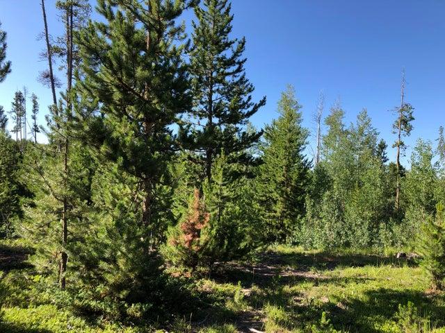 398 GCR 4980, Grand Lake, CO 80447