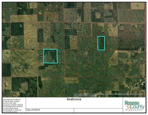 JCT 110TH ST & 160TH AVE, BADGER, MN 56759
