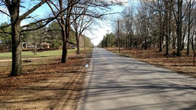 Blackjack Rd., Starkville, MS 39759