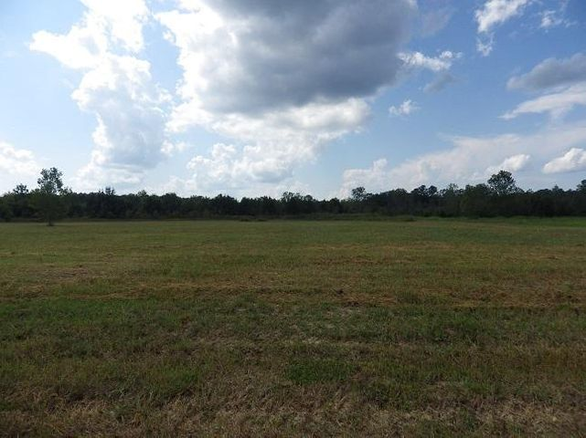 0 Hwy 25 W (Lot 5) 24.4 Acres, Starkville, MS 39759
