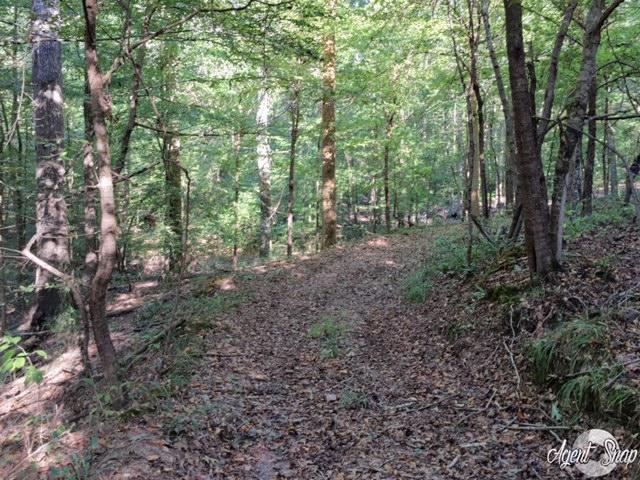 Stokes Cemetary Road, Lexington, MS 39095