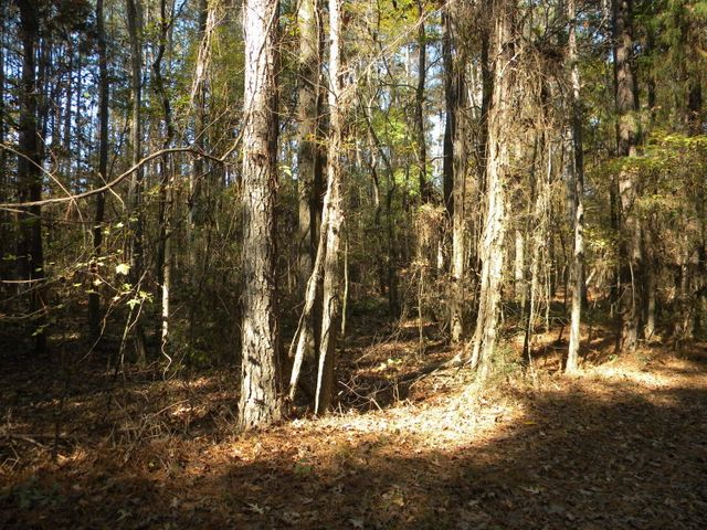Lot 206 & Lot 207 River Oaks, West Point, MS 39773