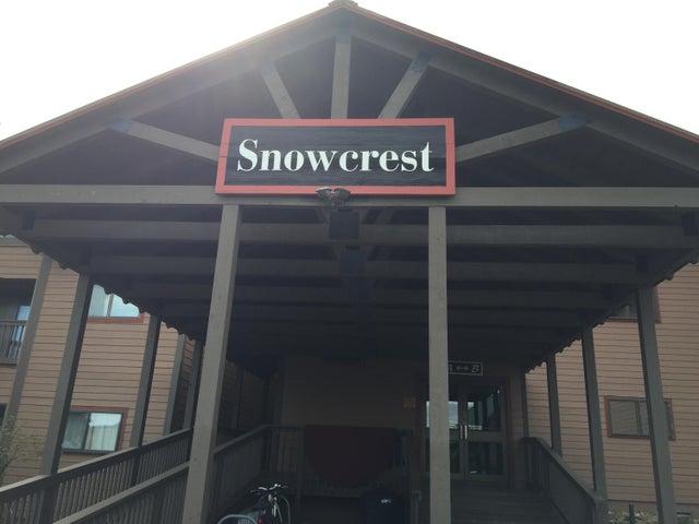 315B SNOWCREST, SNOWSHOE, WV 26209
