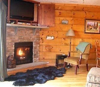 Cozy Gas log fireplace.